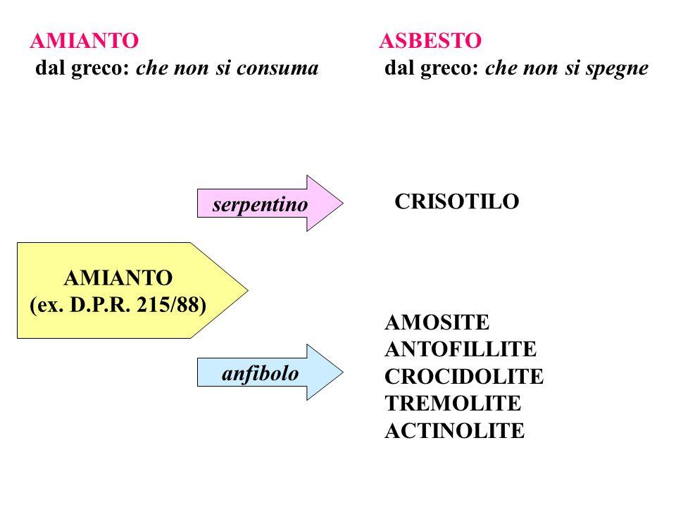AMIANTO dal greco: che non si consuma ASBESTO dal greco: che non si spegne AMIANTO (ex. D.P.R. 215/88) serpentino anfibolo CRISOTILO AMOSITE ANTOFILLI