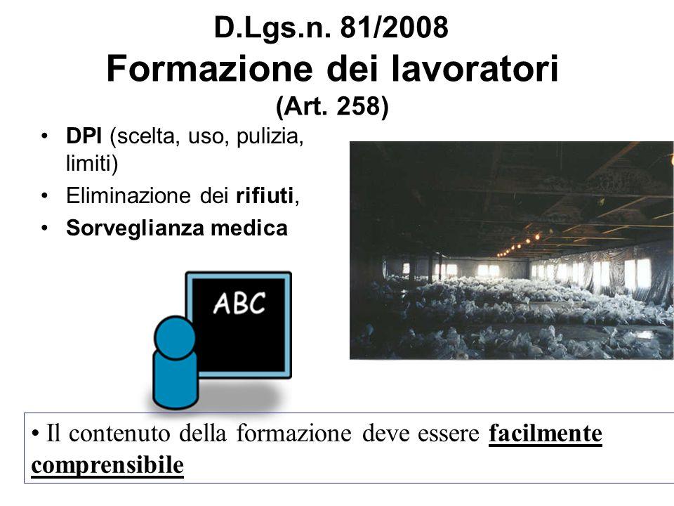 Formazione dei lavoratori (Art. 258) DPI (scelta, uso, pulizia, limiti) Eliminazione dei rifiuti, Sorveglianza medica Il contenuto della formazione de