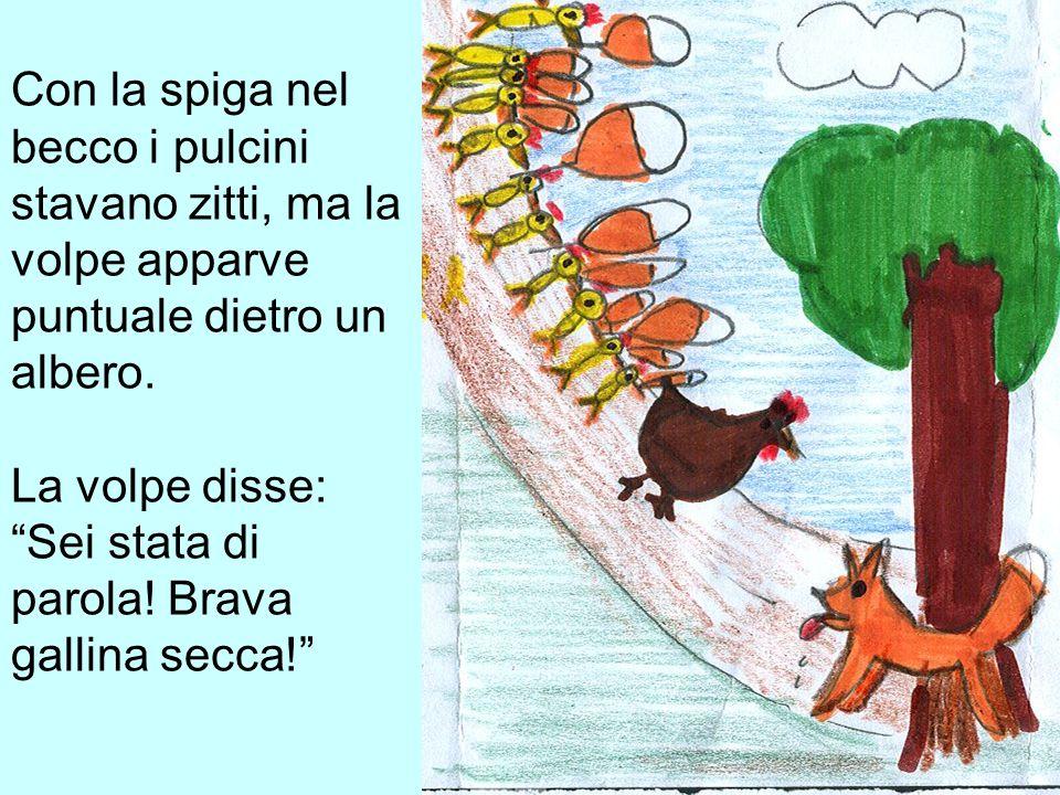 Con la spiga nel becco i pulcini stavano zitti, ma la volpe apparve puntuale dietro un albero. La volpe disse: Sei stata di parola! Brava gallina secc