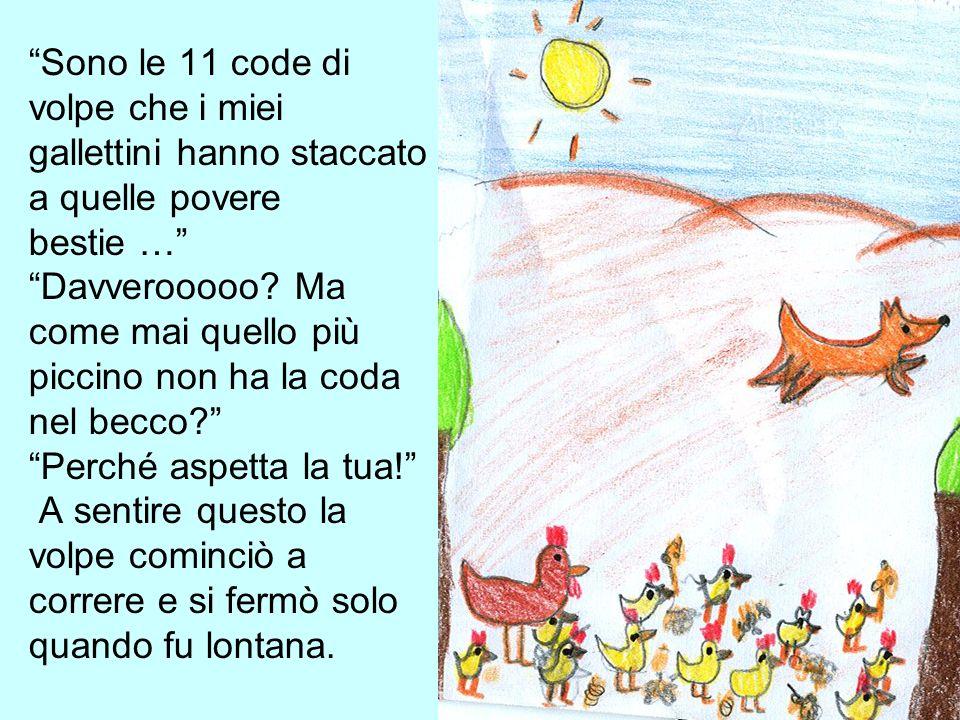 Sono le 11 code di volpe che i miei gallettini hanno staccato a quelle povere bestie … Davverooooo? Ma come mai quello più piccino non ha la coda nel