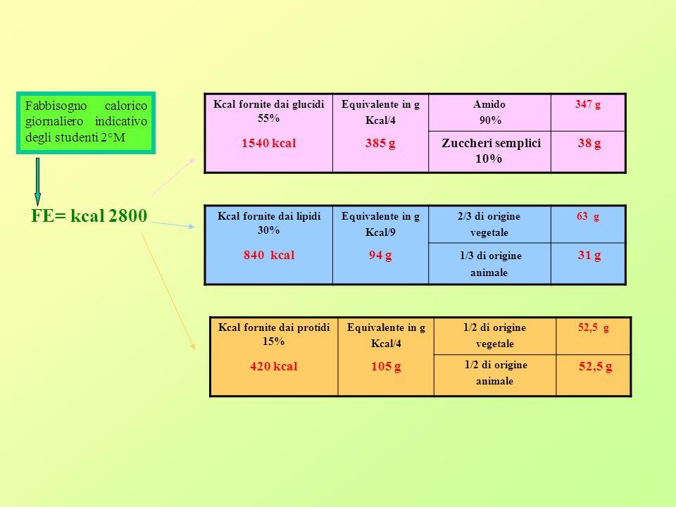 Fabbisogno calorico giornaliero indicativo degli studenti 2°M Kcal fornite dai glucidi 55% Equivalente in g Kcal/4 Amido 90% 347 g 1540 kcal385 g Zuccheri semplici 10% 38 g FE= kcal 2800 Kcal fornite dai lipidi 30% Equivalente in g Kcal/9 2/3 di origine vegetale 63 g 840 kcal94 g 1/3 di origine animale 31 g Kcal fornite dai protidi 15% Equivalente in g Kcal/4 1/2 di origine vegetale 52,5 g 420 kcal105 g 1/2 di origine animale 52,5 g