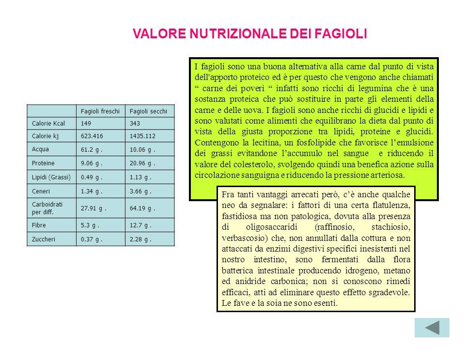 VALORE NUTRIZIONALE DEI FAGIOLI Fagioli freschiFagioli secchi Calorie Kcal149343 Calorie kj623.4161435.112 Acqua 61.2 g.10.06 g.