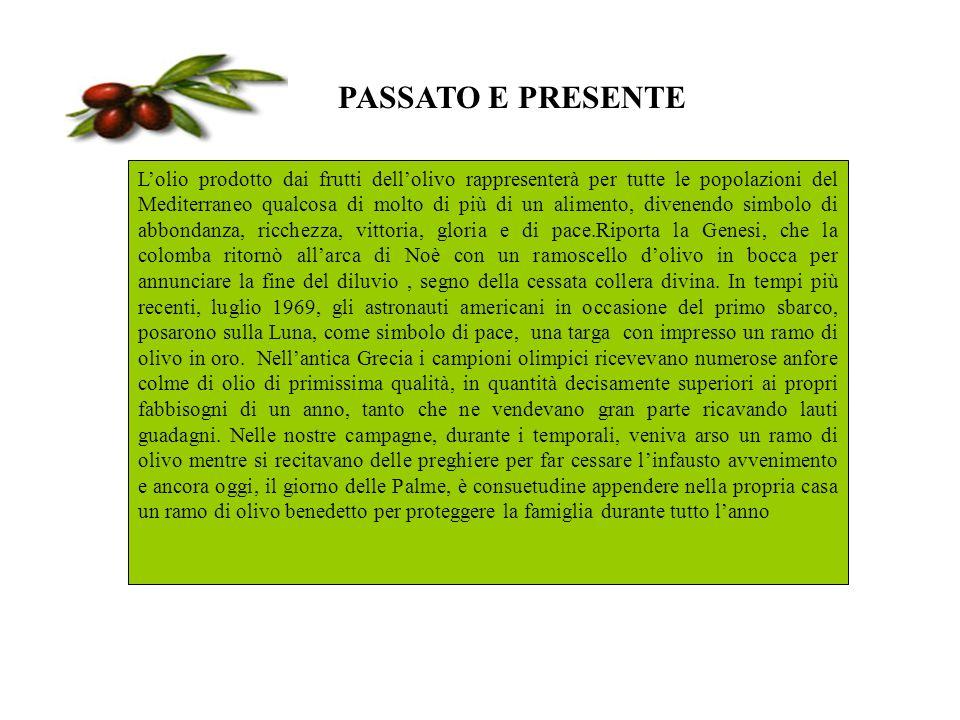 PASSATO E PRESENTE Lolio prodotto dai frutti dellolivo rappresenterà per tutte le popolazioni del Mediterraneo qualcosa di molto di più di un alimento