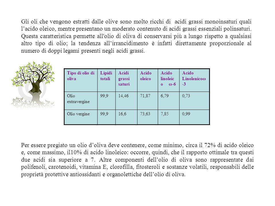 Gli oli che vengono estratti dalle olive sono molto ricchi di acidi grassi monoinsaturi quali lacido oleico, mentre presentano un moderato contenuto d