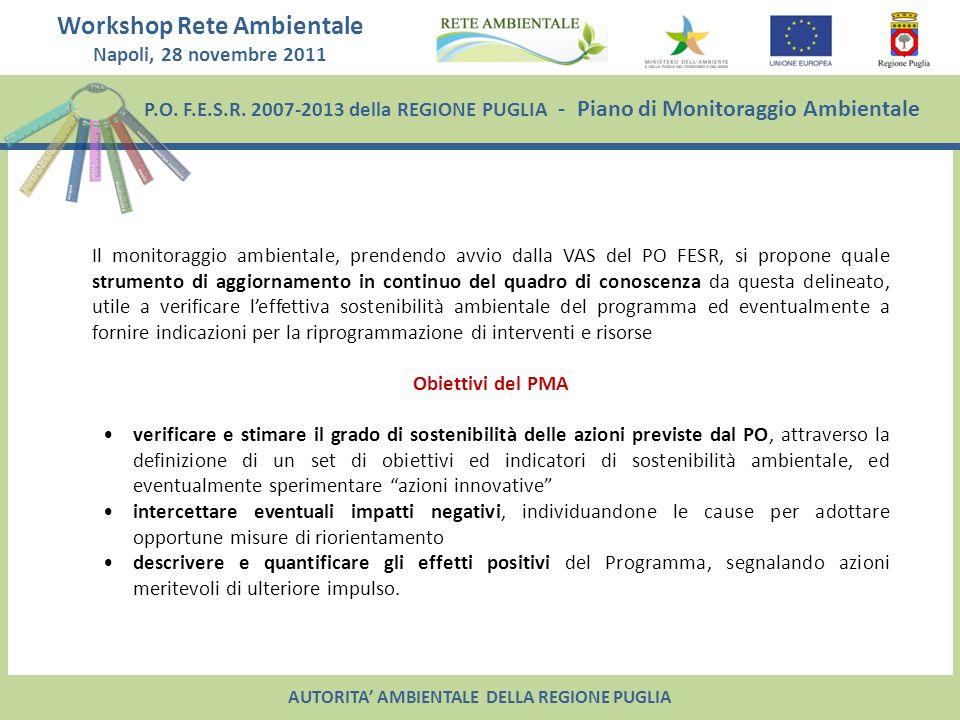 Workshop Rete Ambientale Napoli, 28 novembre 2011 P.O.