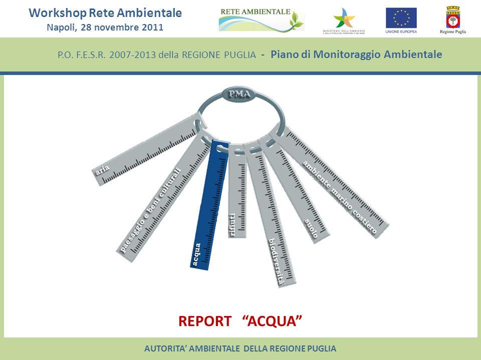 Workshop Rete Ambientale Napoli, 28 novembre 2011 P.O. F.E.S.R. 2007-2013 della REGIONE PUGLIA - Piano di Monitoraggio Ambientale REPORT ACQUA AUTORIT