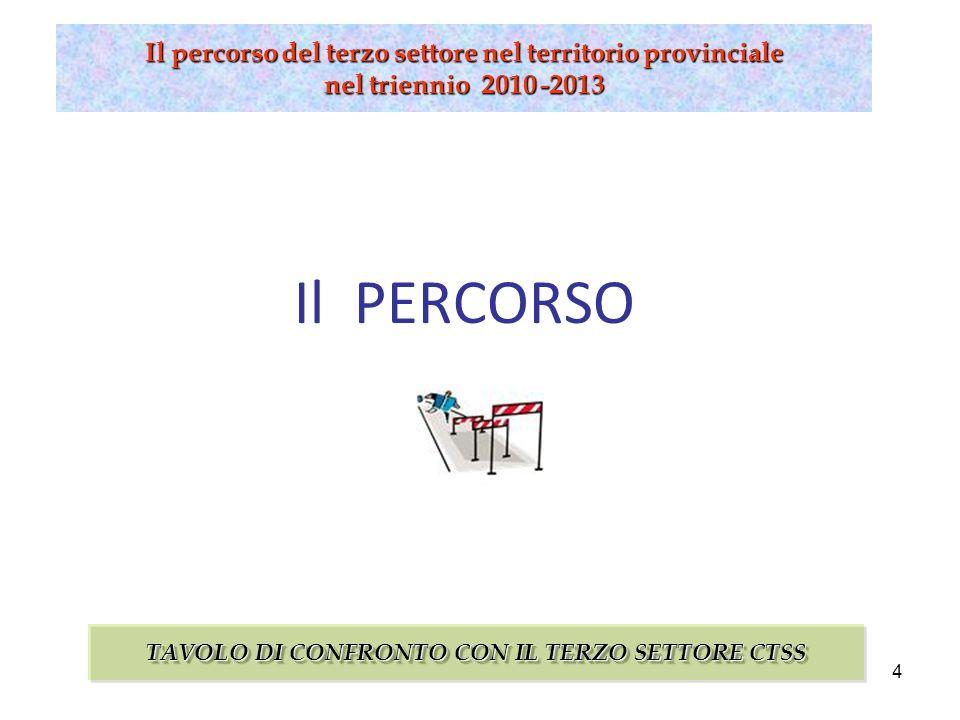 15 Il percorso del terzo settore nel territorio provinciale nel triennio 2010 -2013 COSA E SUCCESSO.