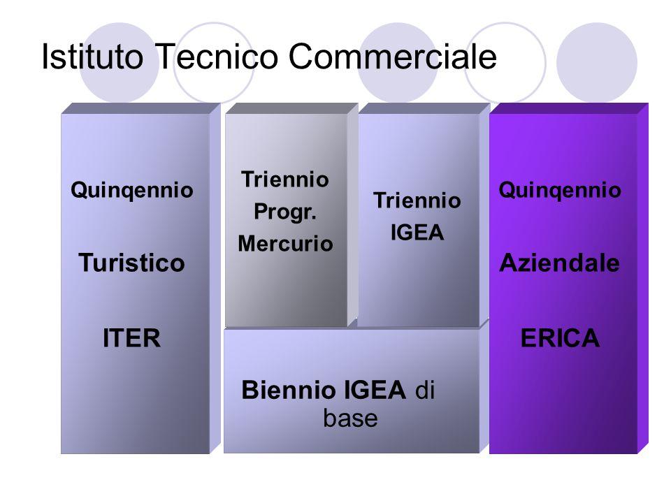 Istituto Tecnico Commerciale Biennio IGEA di base Triennio IGEA Triennio Progr.