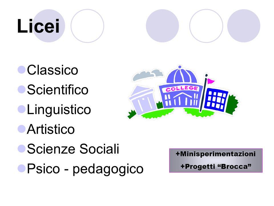 Licei Classico Scientifico Linguistico Artistico Scienze Sociali Psico - pedagogico +Minisperimentazioni +Progetti Brocca