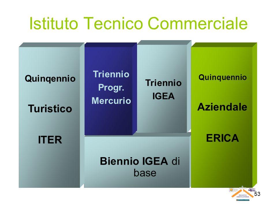 53 Istituto Tecnico Commerciale Biennio IGEA di base Triennio IGEA Triennio Progr. Mercurio Quinqennio Turistico ITER Quinquennio Aziendale ERICA