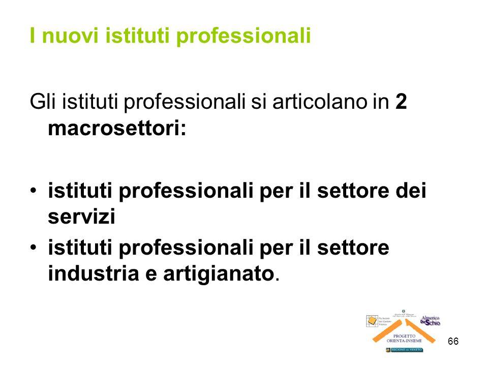 66 I nuovi istituti professionali Gli istituti professionali si articolano in 2 macrosettori: istituti professionali per il settore dei servizi istitu
