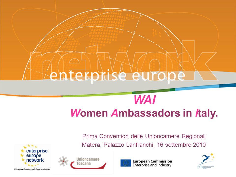 WAI Women Ambassadors in Italy è un progetto cofinanziato dalla Direzione Generale Imprese & Industria della Commissione Europea, ammesso a finanziamento sulla Call for Proposal ENT/CIP/09/E/N08S00 – Specific Action – EU Network of Female Entrepreneurship Ambassadors.