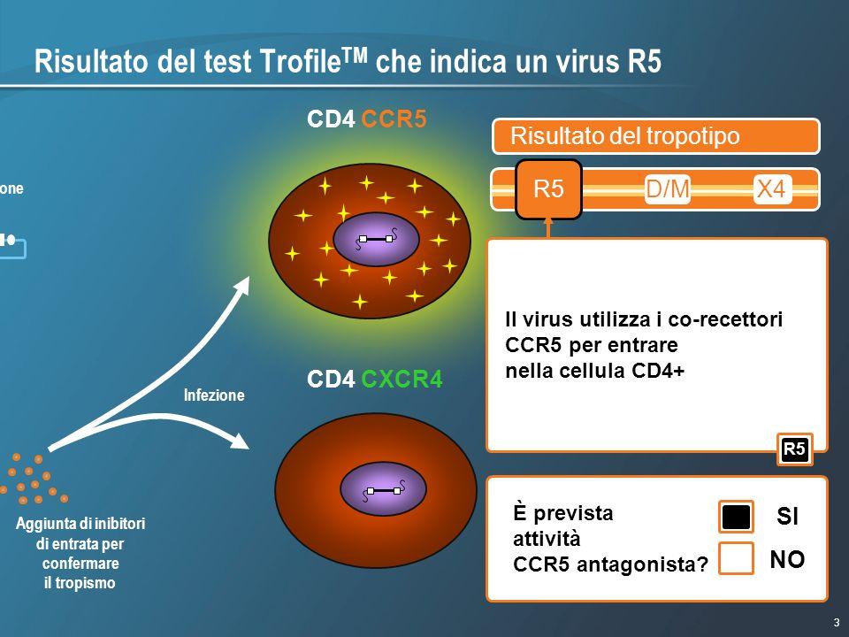 3 1/9/2007 - 730pmeSlide - P3591 - Template - Blue - No Logo Risultato del test Trofile TM che indica un virus R5 CD4 CCR5 R5 X4 R5/X4 (duplice) luc g
