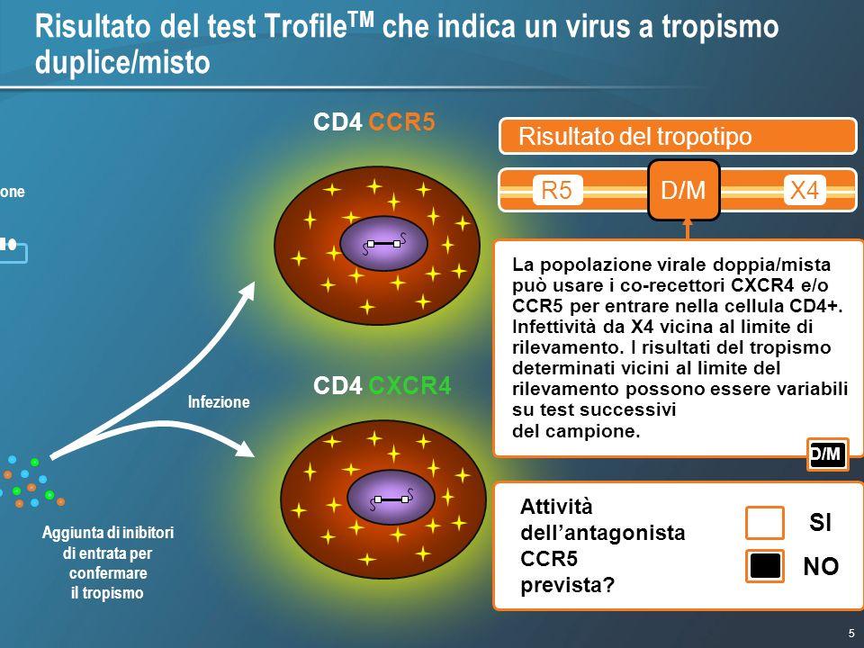 5 1/9/2007 - 730pmeSlide - P3591 - Template - Blue - No Logo CD4 CCR5 R5 X4 R5/X4 (dual) Aggiunta di inibitori di entrata per confermare il tropismo l