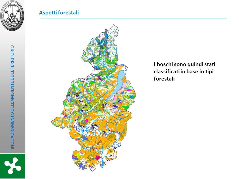 INQUADRAMENTO DELLAMBIENTE E DEL TERRITORIO Aspetti forestali I boschi sono quindi stati classificati in base in tipi forestali
