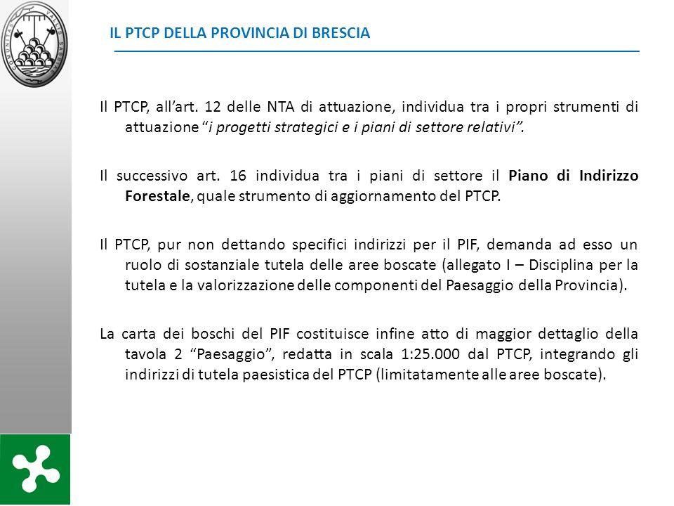 IL PTCP DELLA PROVINCIA DI BRESCIA Il PTCP, allart. 12 delle NTA di attuazione, individua tra i propri strumenti di attuazione i progetti strategici e