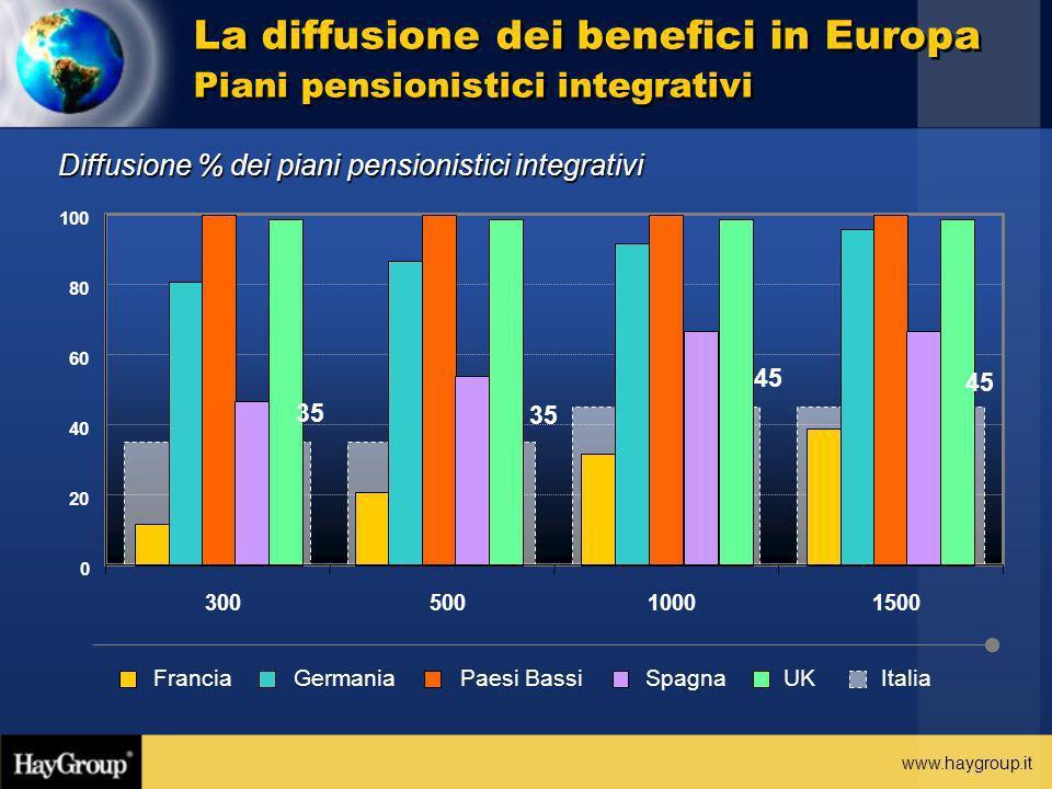 www.haygroup.it La diffusione dei benefici in Europa Piani pensionistici integrativi Diffusione % dei piani pensionistici integrativi ItaliaFranciaGer