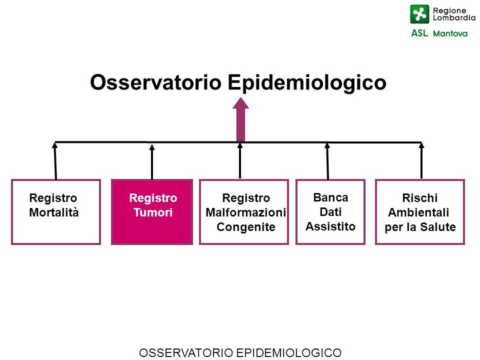 OSSERVATORIO EPIDEMIOLOGICO Osservatorio Epidemiologico Rischi Ambientali per la Salute Registro Mortalità Registro Tumori Registro Malformazioni Cong