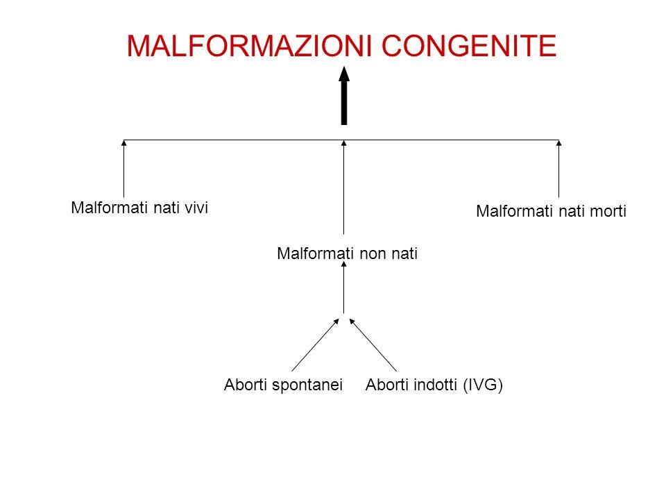 MALFORMAZIONI CONGENITE Malformati nati vivi Malformati non nati Malformati nati morti Aborti spontaneiAborti indotti (IVG)