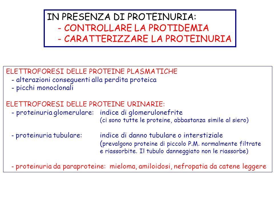 IN PRESENZA DI PROTEINURIA: - CONTROLLARE LA PROTIDEMIA - CARATTERIZZARE LA PROTEINURIA ELETTROFORESI DELLE PROTEINE PLASMATICHE - alterazioni conseguenti alla perdita proteica - picchi monoclonali ELETTROFORESI DELLE PROTEINE URINARIE: - proteinuria glomerulare:indice di glomerulonefrite (ci sono tutte le proteine, abbastanza simile al siero) - proteinuria tubulare:indice di danno tubulare o interstiziale ( prevalgono proteine di piccolo P.M.
