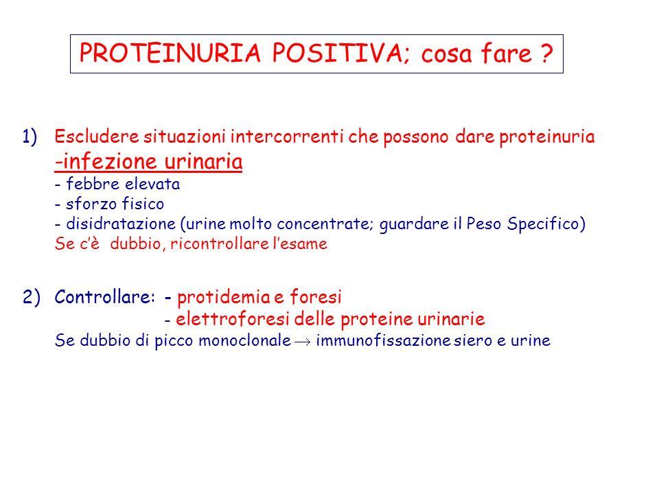 1)Escludere situazioni intercorrenti che possono dare proteinuria -infezione urinaria - febbre elevata - sforzo fisico - disidratazione (urine molto c