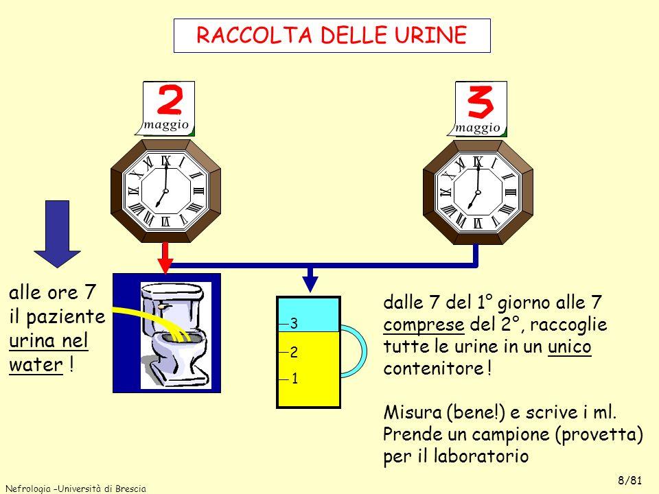 Nefrologia –Università di Brescia 8/81 RACCOLTA DELLE URINE 7 7 alle ore 7 il paziente urina nel water ! dalle 7 del 1° giorno alle 7 comprese del 2°,