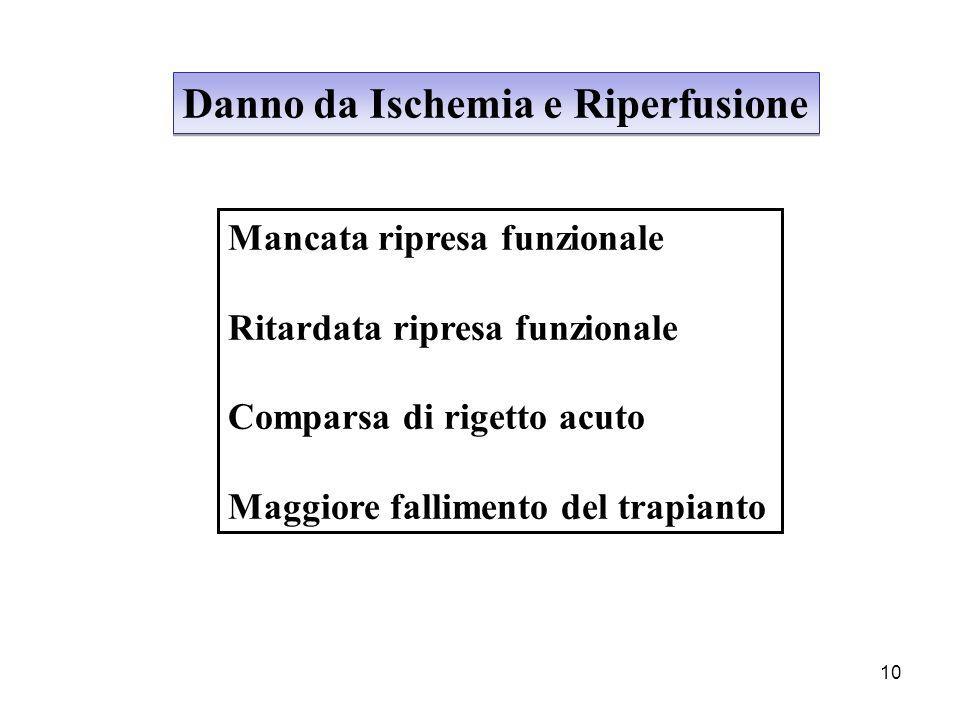 10 Danno da Ischemia e Riperfusione Mancata ripresa funzionale Ritardata ripresa funzionale Comparsa di rigetto acuto Maggiore fallimento del trapiant