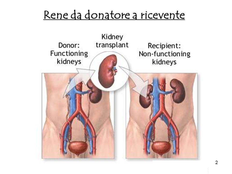 Resultati 103 pazienti –48 trapianti di fegato –55 trapianti di rene 746 livelli di tacrolimus furono analizzati 43