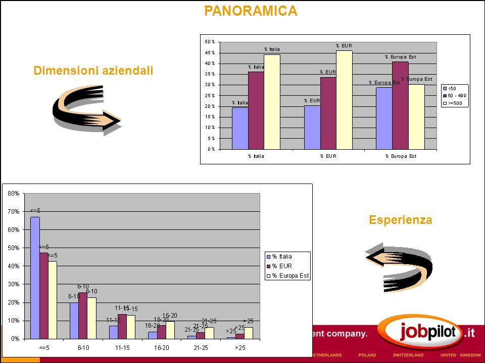PANORAMICA Dimensioni aziendali Esperienza