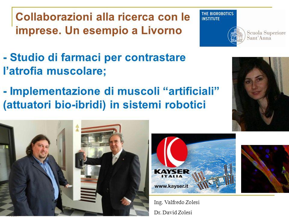 - Studio di farmaci per contrastare latrofia muscolare; - Implementazione di muscoli artificiali (attuatori bio-ibridi) in sistemi robotici Ing.