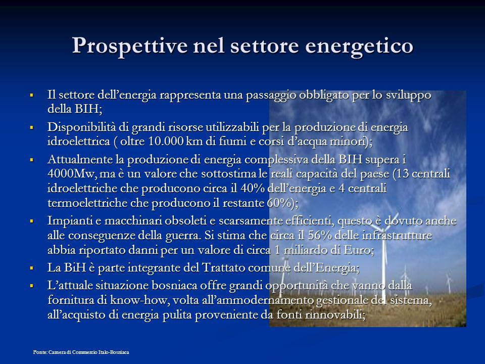 Prospettive nel settore energetico Il settore dellenergia rappresenta una passaggio obbligato per lo sviluppo della BIH; Il settore dellenergia rappre