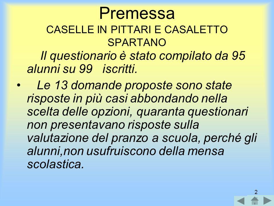 2 Premessa CASELLE IN PITTARI E CASALETTO SPARTANO Il questionario è stato compilato da 95 alunni su 99 iscritti.