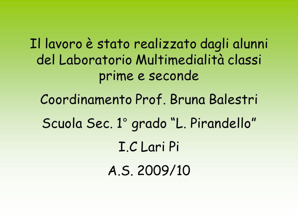 Il lavoro è stato realizzato dagli alunni del Laboratorio Multimedialità classi prime e seconde Coordinamento Prof. Bruna Balestri Scuola Sec. 1° grad