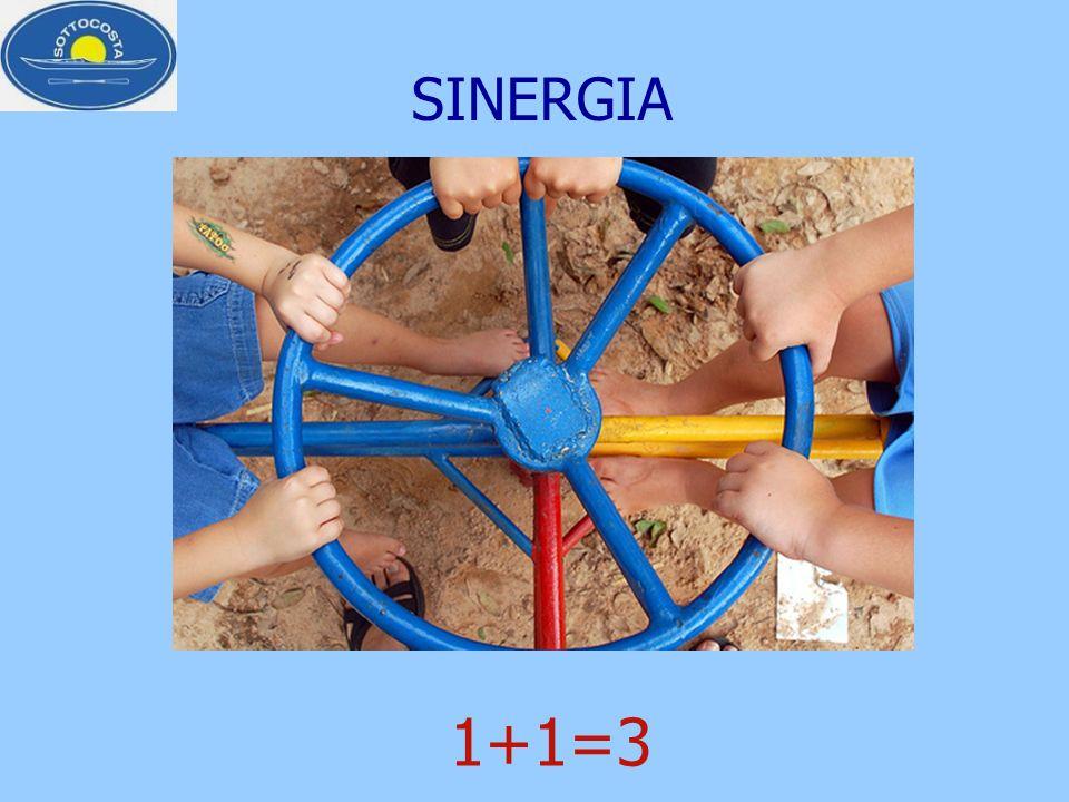 SINERGIA 1+1=3
