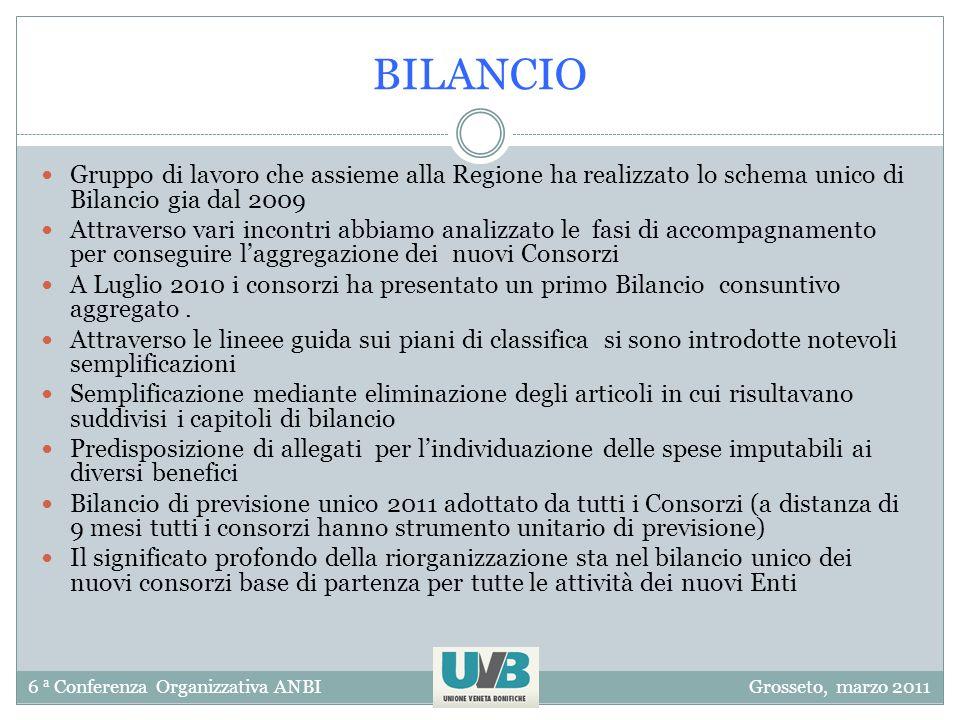 6 a Conferenza Organizzativa ANBIGrosseto, marzo 2011 BILANCIO Gruppo di lavoro che assieme alla Regione ha realizzato lo schema unico di Bilancio gia