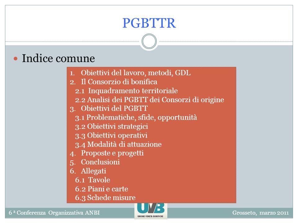 6 a Conferenza Organizzativa ANBIGrosseto, marzo 2011 PGBTTR Indice comune 1.Obiettivi del lavoro, metodi, GDL 2.Il Consorzio di bonifica 2.1 Inquadra