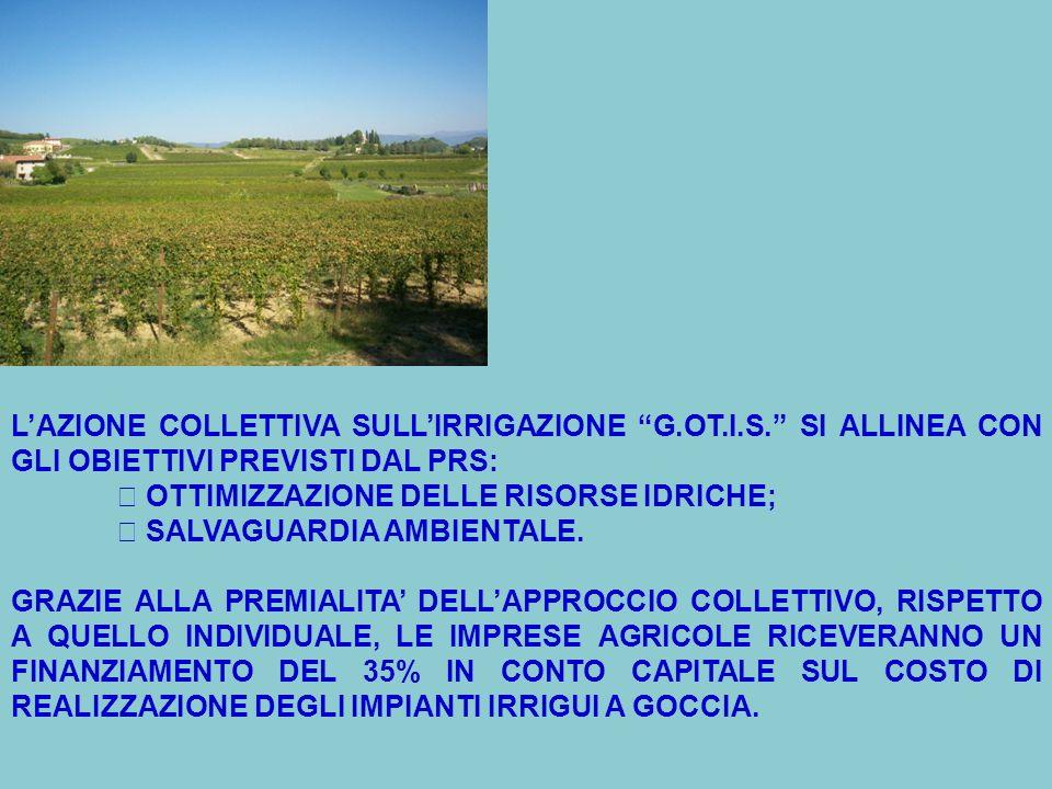 LAZIONE COLLETTIVA SULLIRRIGAZIONE G.OT.I.S.