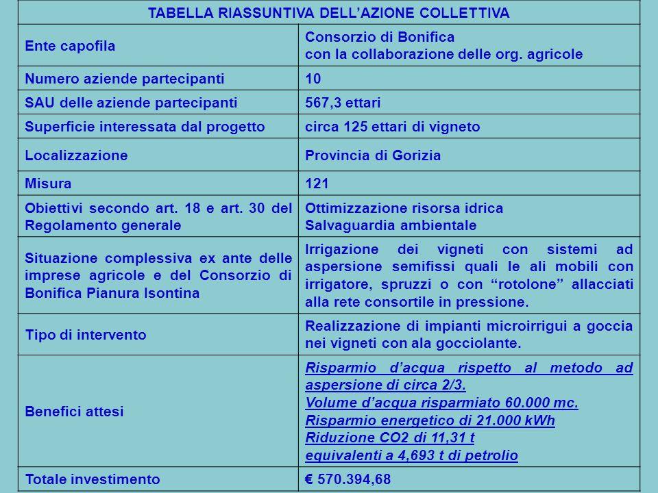 TABELLA RIASSUNTIVA DELLAZIONE COLLETTIVA Ente capofila Consorzio di Bonifica con la collaborazione delle org.