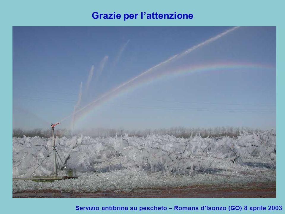 Servizio antibrina su pescheto – Romans dIsonzo (GO) 8 aprile 2003 Grazie per lattenzione