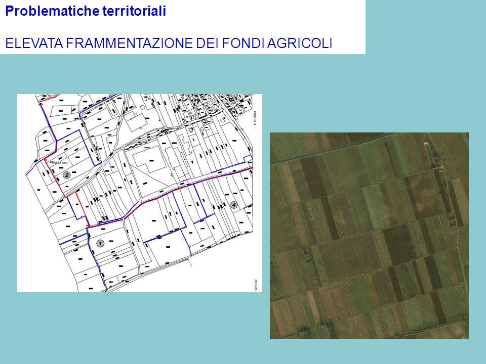 Problematiche territoriali ELEVATA FRAMMENTAZIONE DEI FONDI AGRICOLI