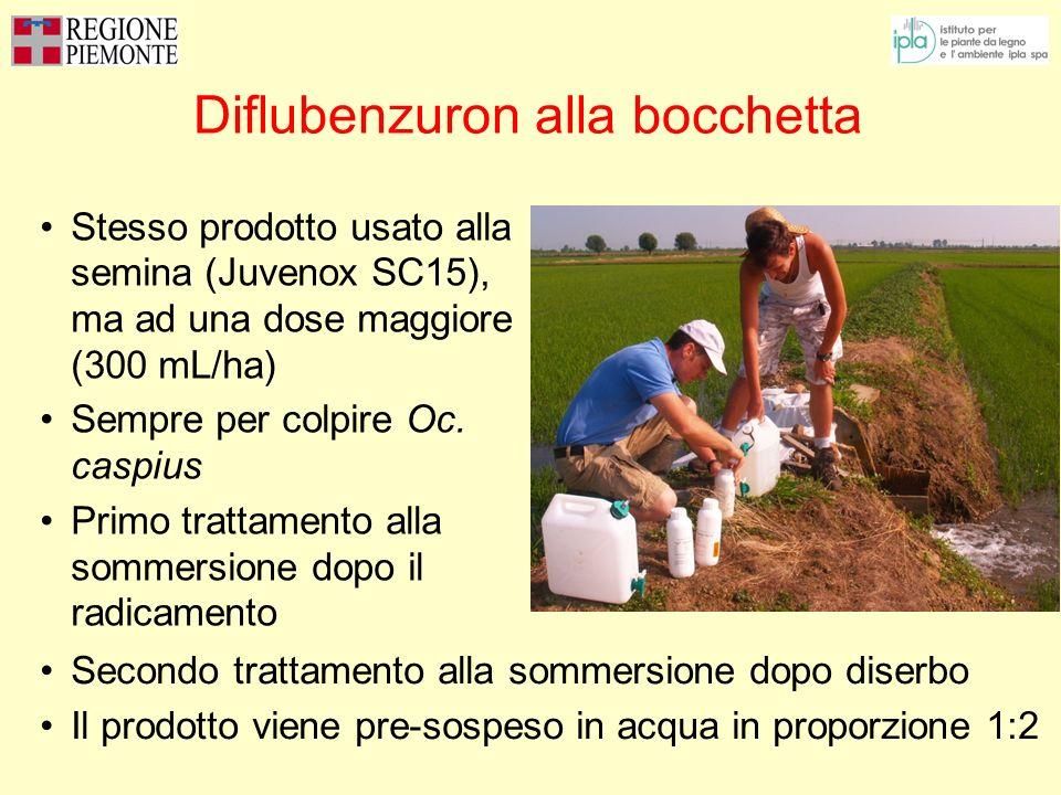 Diflubenzuron alla bocchetta Stesso prodotto usato alla semina (Juvenox SC15), ma ad una dose maggiore (300 mL/ha) Sempre per colpire Oc. caspius Prim