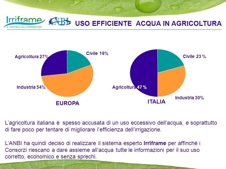 Civile 19% Industria 54% Agricoltura 27% Lagricoltura italiana è spesso accusata di un uso eccessivo dellacqua, e soprattutto di fare poco per tentare di migliorare lefficienza dellirrigazione.