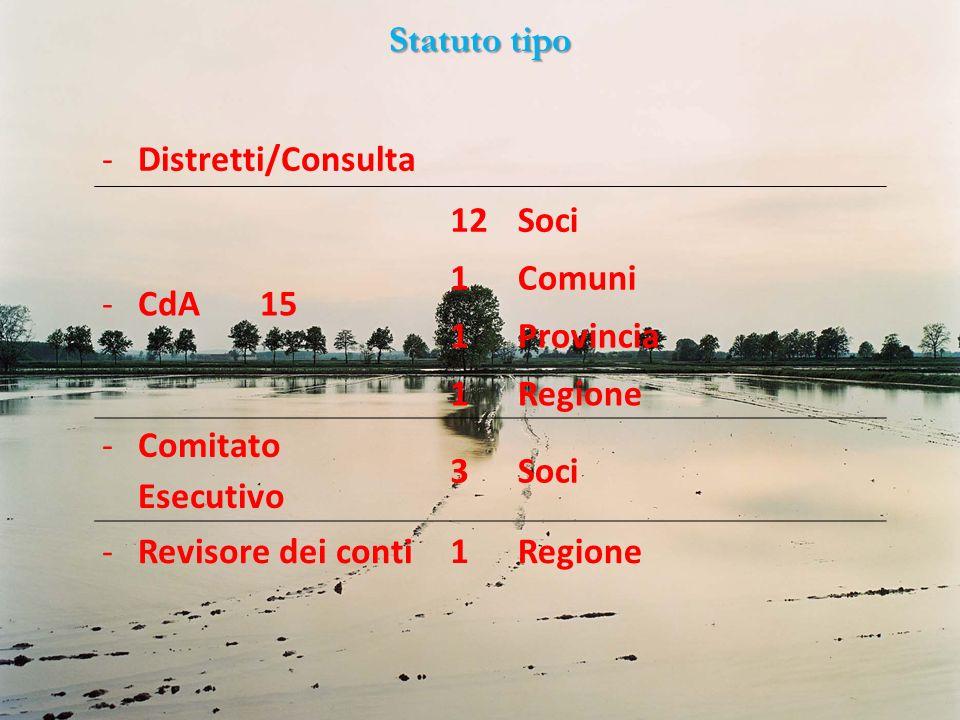 Statuto tipo -Distretti/Consulta -CdA 15 12Soci 1Comuni 1Provincia 1Regione -Comitato Esecutivo 3Soci -Revisore dei conti1Regione