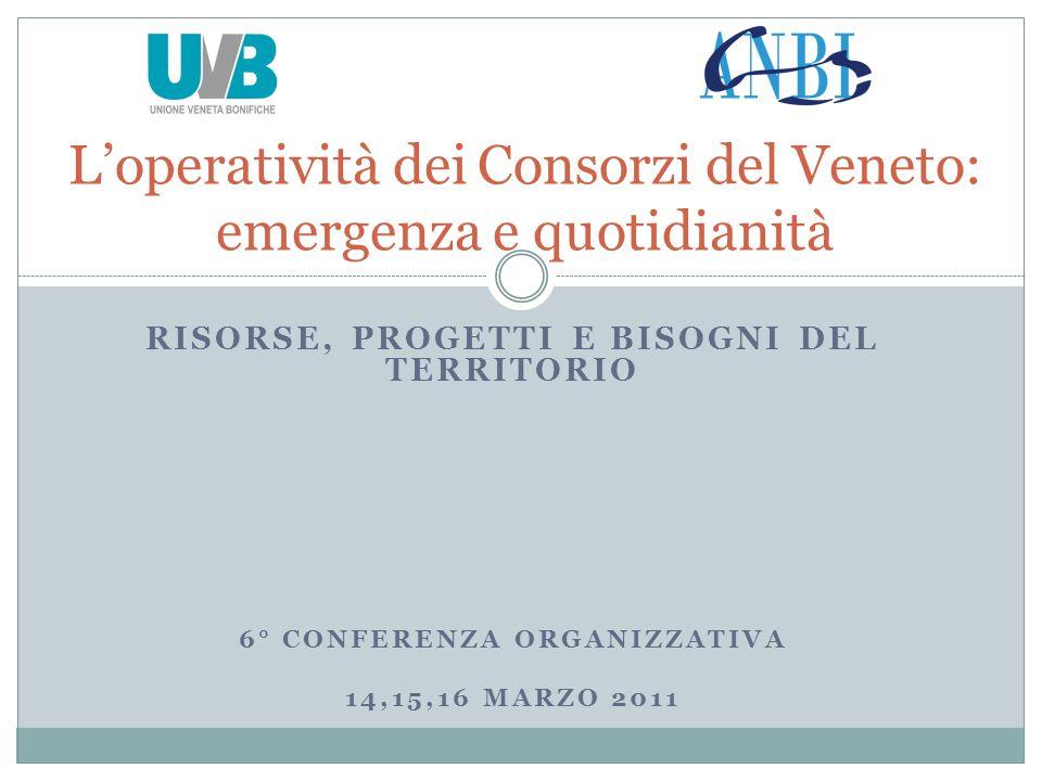 RISORSE, PROGETTI E BISOGNI DEL TERRITORIO 6° CONFERENZA ORGANIZZATIVA 14,15,16 MARZO 2011 Loperatività dei Consorzi del Veneto: emergenza e quotidianità