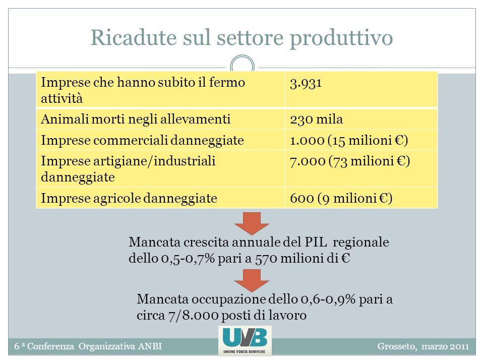6 a Conferenza Organizzativa ANBIGrosseto, marzo 2011 Ricadute sul settore produttivo Imprese che hanno subito il fermo attività 3.931 Animali morti negli allevamenti230 mila Imprese commerciali danneggiate1.000 (15 milioni ) Imprese artigiane/industriali danneggiate 7.000 (73 milioni ) Imprese agricole danneggiate600 (9 milioni ) Mancata crescita annuale del PIL regionale dello 0,5-0,7% pari a 570 milioni di Mancata occupazione dello 0,6-0,9% pari a circa 7/8.000 posti di lavoro