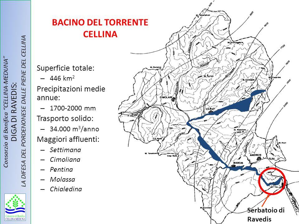 Serbatoio di Ravedis Superficie totale: – 446 km 2 Precipitazioni medie annue: – 1700-2000 mm Trasporto solido: – 34.000 m 3 /anno Maggiori affluenti: