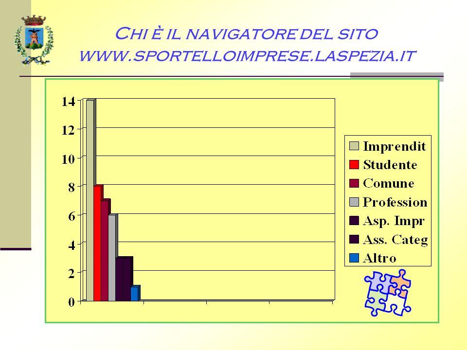 Chi è il navigatore del sito www.sportelloimprese.laspezia.it