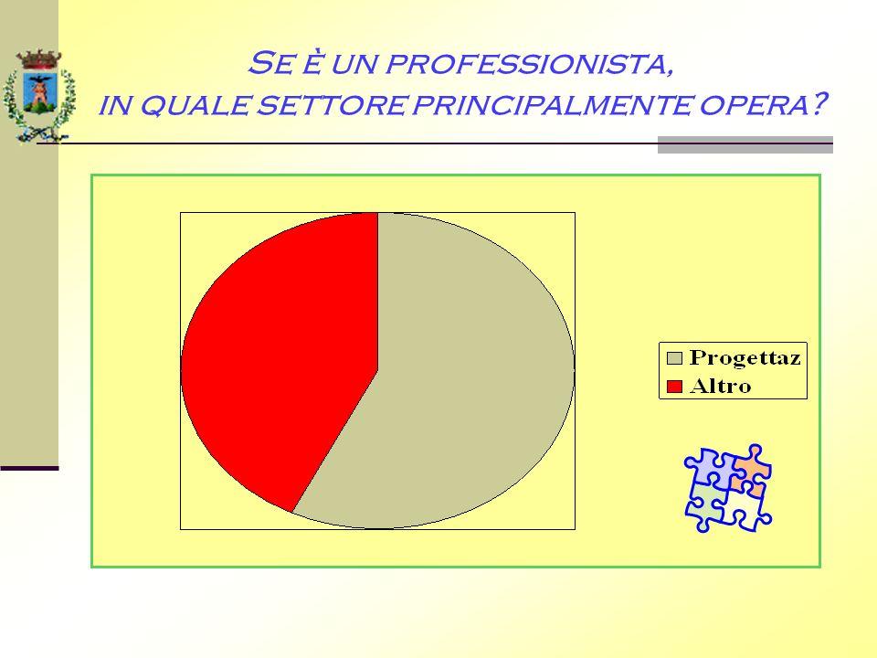 Se è un professionista, in quale settore principalmente opera?