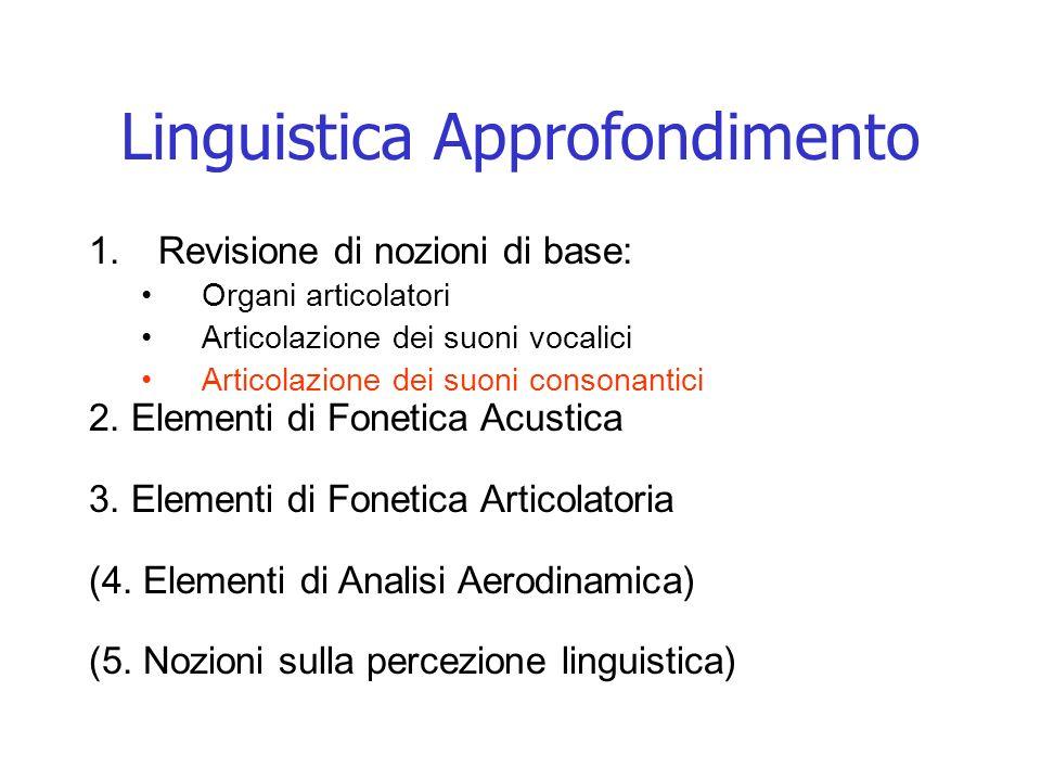 Consonanti Fricative Le consonanti fricative sono prodotte con un restringimento del canale orale tale che laria in uscita provoca un rumore di frizione.