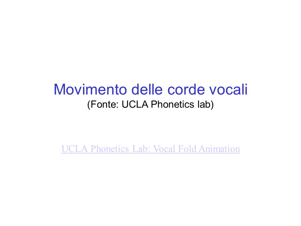 Movimento delle corde vocali (Fonte: UCLA Phonetics lab) UCLA Phonetics Lab: Vocal Fold Animation